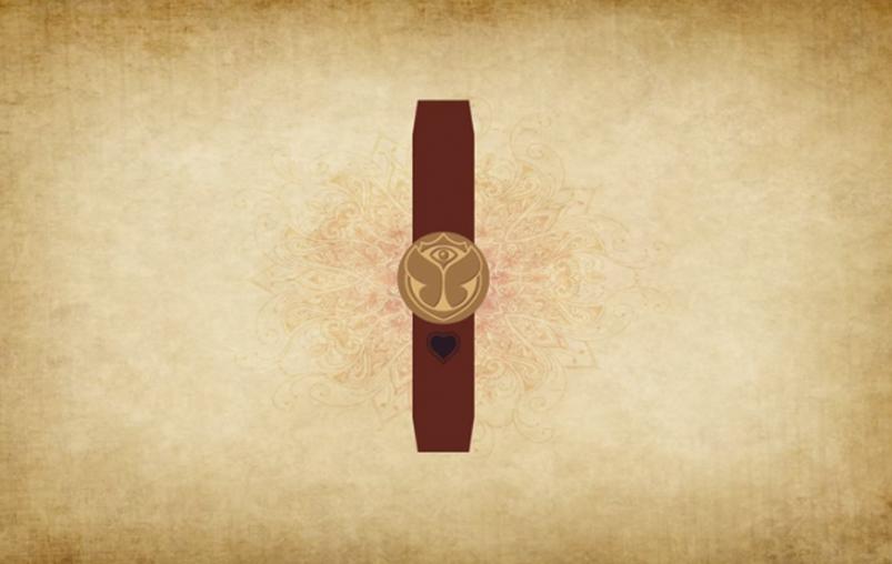 Tomorrowland, un bracelet, des amis et facebook