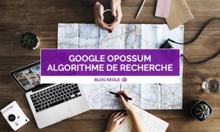 Google nous présente Opossum, son nouvel algorithme de recherche 100% local